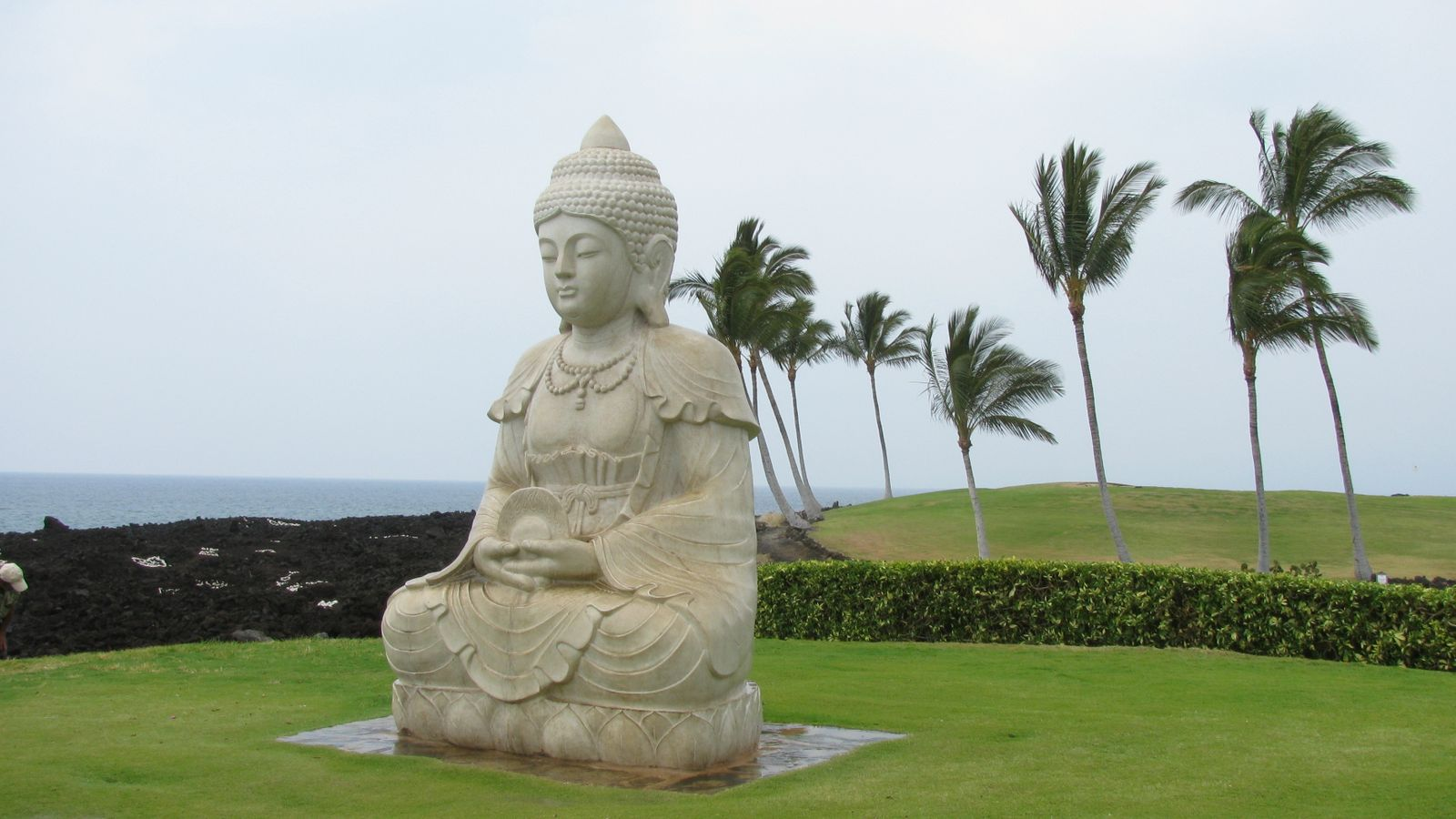 Statue at Waikoloa Village, Hawaii